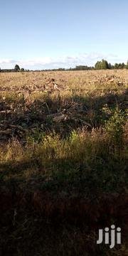 Land In Kitale 40 Acres In Entebes   Land & Plots For Sale for sale in Trans-Nzoia, Endebess
