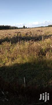 Land 15 Acres In Kitale Kolongolo With Title Deed   Land & Plots For Sale for sale in Trans-Nzoia, Kwanza