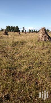 Land in Kitale 8 Acres With Title Deed 900k Per Acre   Land & Plots For Sale for sale in Trans-Nzoia, Kwanza
