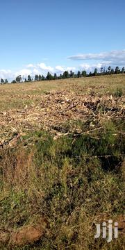 Land In Kitale For Lease | Land & Plots for Rent for sale in Trans-Nzoia, Kwanza
