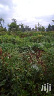 Plot For Sale | Land & Plots For Sale for sale in Trans-Nzoia, Waitaluk