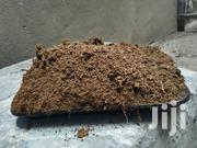 Ready To Use Moist Coco Peat For Sale | Feeds, Supplements & Seeds for sale in Nairobi, Ruai
