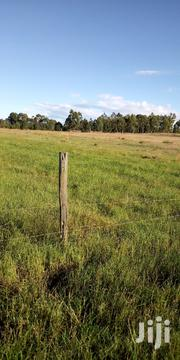 Land 10 Acres in Kuinet 1.2m Per Acre | Land & Plots For Sale for sale in Uasin Gishu, Moiben