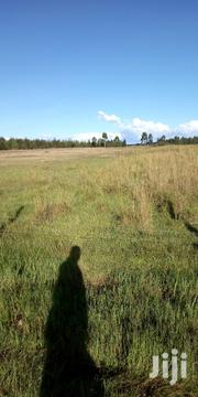 Land 10 Acres in Soy 900k Per Acre   Land & Plots For Sale for sale in Uasin Gishu, Soy