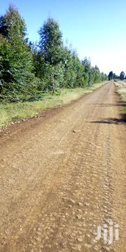 Land 5 Acres In Kabomboi   Land & Plots For Sale for sale in Trans-Nzoia, Kwanza