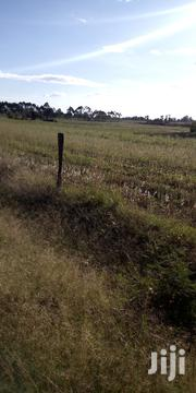 Land 5 Acres In Kitale Marinta   Land & Plots For Sale for sale in Trans-Nzoia, Kwanza