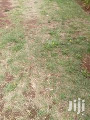 One Acre | Land & Plots For Sale for sale in Nyeri, Kabaru