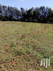 Land Prime Land At Ngeria 600 Acres With Title | Land & Plots For Sale for sale in Uasin Gishu, Langas
