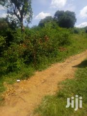 Sale Of A Plot 100by100 Behind Guest House Opp Kettno Petrol Kiritiri | Land & Plots For Sale for sale in Embu, Mavuria