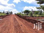 Ruiru 1/4 Acre Plots For Sale | Land & Plots For Sale for sale in Kiambu, Ruiru