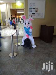 Birthday Bunny Mascot | Party, Catering & Event Services for sale in Nairobi, Karen