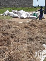Boma Rhodes Seed | Feeds, Supplements & Seeds for sale in Makueni, Makindu