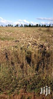 20 Acres For Leasing Needed In Bungoma | Land & Plots for Rent for sale in Bungoma, West Nalondo
