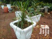 Concrete Flower Pots | Garden for sale in Nairobi, Kilimani