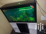Aquarium With Stand's | Fish for sale in Nairobi, Roysambu