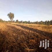 1.5 Acres Gatheri Timau | Land & Plots For Sale for sale in Nyeri, Konyu