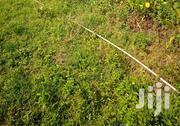 Productive 1/2 Hactare Land   Land & Plots For Sale for sale in Meru, Nyaki West
