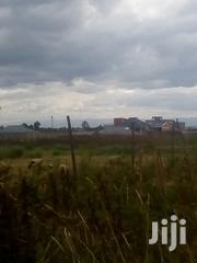Plot for Sale in Nakuru Lanet Runda | Land & Plots For Sale for sale in Nakuru, Nakuru East