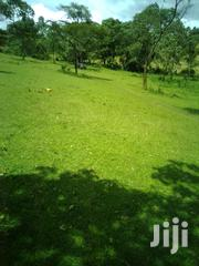 Free Hold Piece Of Land For Commercial Use | Land & Plots For Sale for sale in Kwale, Chengoni/Samburu