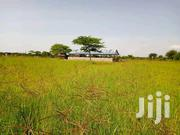 Asal Secrets Farm | Land & Plots For Sale for sale in Baringo, Emining