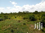 Plot For Sale 50*100 | Land & Plots For Sale for sale in Embu, Kiambere