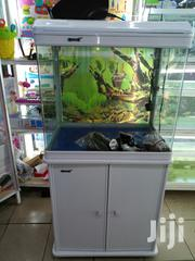 Brand New 2ft Camry Fish Tank/Aquarium, 100litres | Pet's Accessories for sale in Nairobi, Karen