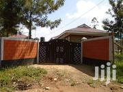 2 Bedroomed House to Let | Houses & Apartments For Rent for sale in Kakamega, Butsotso East
