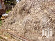 Elephant Grass For Makuti And Shades | Meals & Drinks for sale in Nyeri, Naromoru Kiamathaga