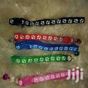Puppy And Cat Collars | Pet's Accessories for sale in Kajiado, Kitengela
