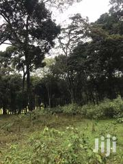 Nyali One Acre Beach Plot For Quick Sale | Land & Plots For Sale for sale in Mombasa, Majengo
