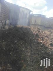 Best Manure For Sale | Feeds, Supplements & Seeds for sale in Nairobi, Kangemi