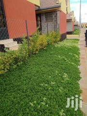 Selling 3br Plus Sq Kitengela Milimani | Houses & Apartments For Rent for sale in Kajiado, Kitengela