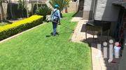 GRASS CUTTING/ GARDENING MAINTENANCE/ TREE CUTTING & PRUNING | Landscaping & Gardening Services for sale in Nairobi, Kilimani