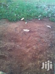 Prime Land   Land & Plots For Sale for sale in Busia, Burumba