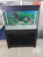 Aquarium-fish Tank | Pet's Accessories for sale in Nairobi, Nairobi Central