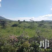1⁄4 Acre on Sale in Ngong-Kimuka | Land & Plots For Sale for sale in Kajiado, Ngong
