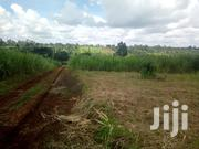 Kirinyaga Karatina Area Agricultural Land For Sale | Land & Plots For Sale for sale in Kirinyaga, Kariti