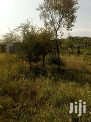 One Acre for Settlement and Farming | Land & Plots For Sale for sale in Nyandarua, Karau