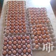 Layers Egss | Livestock & Poultry for sale in Mombasa, Miritini