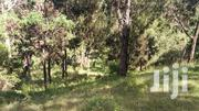 4.5 Acre Land for Sale in Nyeri Gatarakwa | Land & Plots For Sale for sale in Nyeri, Gatarakwa