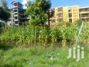 Commercial Plot for Sale at Kenol Town and 100mtrs From Muranga Road | Land & Plots For Sale for sale in Murang'a, Kimorori/Wempa