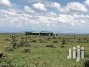 40 Acre Land in Joska Near the Last Village Resort With Ready Title | Land & Plots For Sale for sale in Nairobi, Nairobi Central