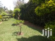 1/4 Of An Acre For Sale In Kahawa Sukari Baringo Road At 13.5m | Land & Plots For Sale for sale in Kiambu, Gitothua
