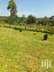 Three Acres Land | Land & Plots For Sale for sale in Kisumu, Central Nyakach
