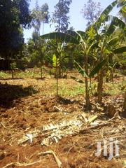 Land For Sale | Land & Plots For Sale for sale in Migori, Isibania