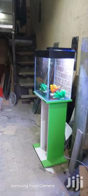 Fish Aquariums | Fish for sale in Nairobi, Kitisuru