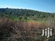 Prime Property On Sale | Land & Plots For Sale for sale in Laikipia, Marmanet