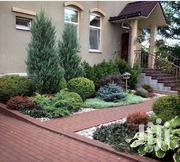 Desgner Landscaping Services | Landscaping & Gardening Services for sale in Nairobi, Kitisuru