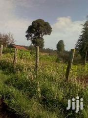 40 Acres Well Developed  Farm  Naivasha Area | Land & Plots For Sale for sale in Nakuru, Naivasha East