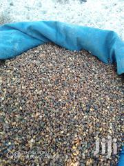 Simsim Seeds | Feeds, Supplements & Seeds for sale in Kilifi, Malindi Town